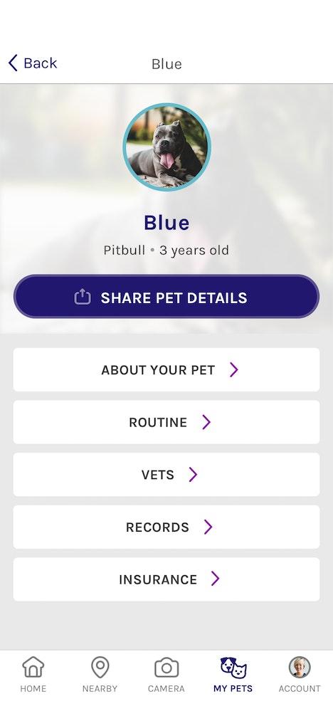 Scritch Screen Pets